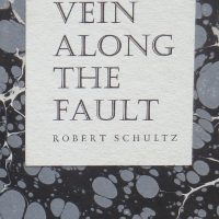 Vein Along the Fault cover