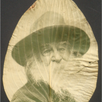 Whitman in a leaf from his garden